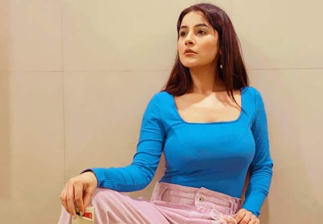Shehnaaz Gill feels all her wishes have come true after working with Diljit and Badshah