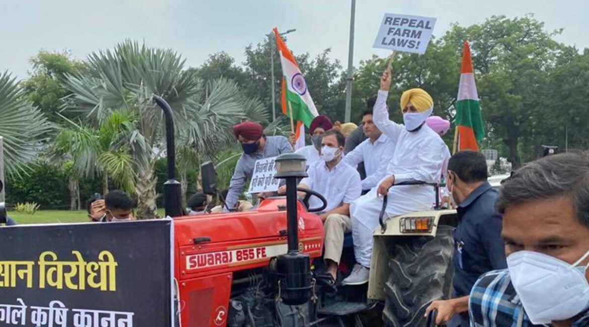 To protest farm laws, Rahul Gandhi drives tractor to Parliament